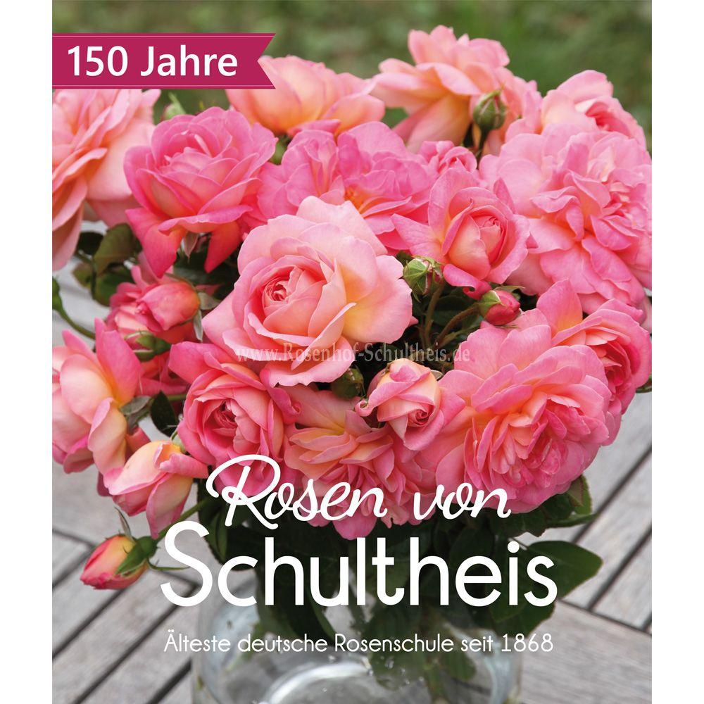 Bestellkatalog 20182019 Rosen Online Kaufen Im Rosenhof